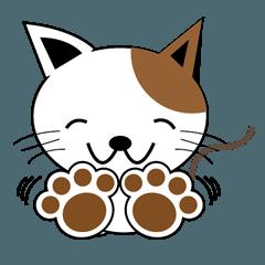 かわいい仔猫の可愛い日常会話