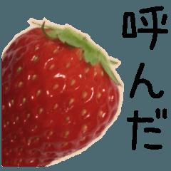 こんな、イチゴ どうでしょう?