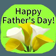 父の日に花を♪Part2