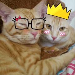 Auon and Pang
