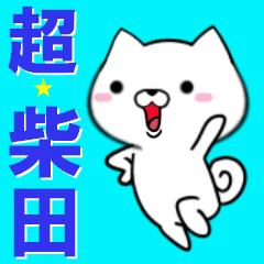 超★柴田(しばた・シバタ)なイヌ