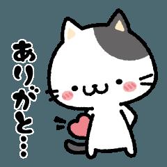 [LINEスタンプ] にゃーにゃー感謝するありがとにゃんこ (1)