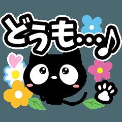 クロネコと花