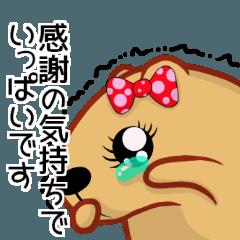 きゃぴばら女子部【感謝】