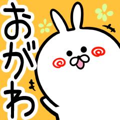 [おがわ/小川さん]専用40個入!名前スタンプ