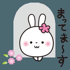 花うさちゃん